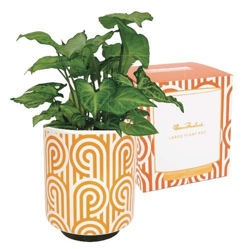 Florence Broadhurst Large Planter Pot Orange