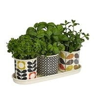 Orla Kiely Enamel Herb Pots | Set of 3